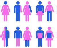 Por que o LGBT passou a negar a teoria do gênero?