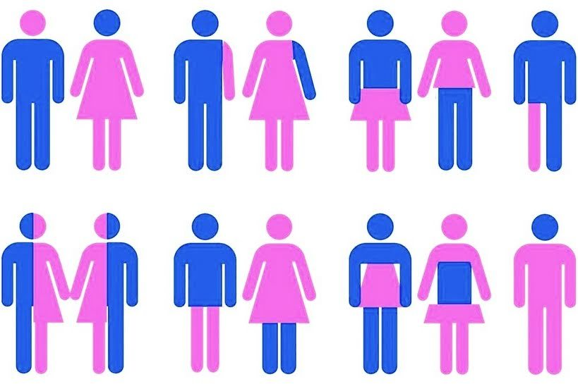 teoria de gênero | Dá pra ser ético sem negar a biologia