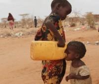 Urgente apelo dos bispos africanos: Respeitai, amai e servi a África na verdade!