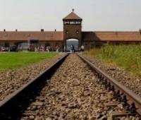 Para a JMJ 2016 mais de 225 mil peregrinos se inscreveram para visitar Auschwitz