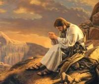 Abandonar-se em Cristo para sermos criaturas novas