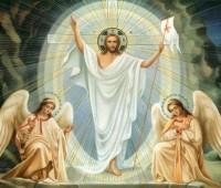 """Papa: """"Cristo nos dá força para nos levantarmos"""""""