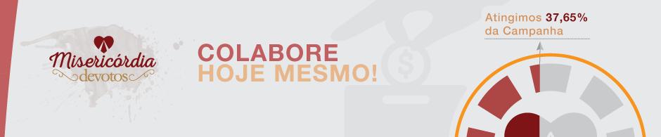 07_Grafico_campanha_devotos
