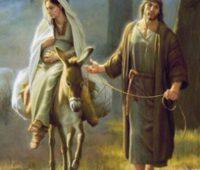 Papa: preparar o Natal abandonando os ídolos do mundo