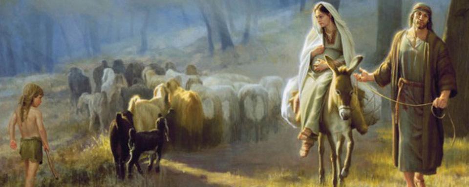 advento-misericordia