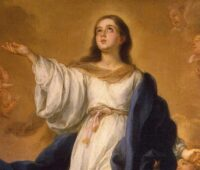 Papa Francisco: a humildade é o segredo para alcançar o Céu