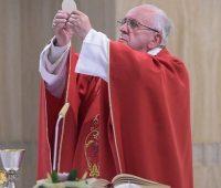 """Papa Francisco: """"Que os evangelizadores não sejam carreiristas"""""""