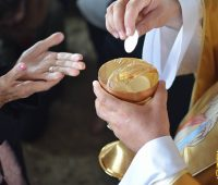 Papa: Ao comungar se recebe a vida do Senhor