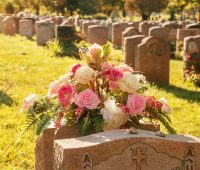 Reflexão sobre o mistério da morte e o começo de uma nova vida