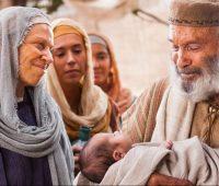 Dia de São Zacarias e Santa Isabel, pais de João Batista