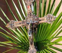 O que o Domingo de Ramos nos ensina