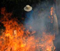 Incêndios na Amazônia: oração pela proteção das florestas