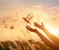 Santa Faustina: agradecimento pela vida