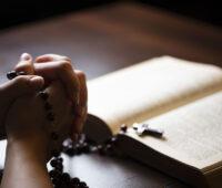 """Evangelho do Dia: """"Quero misericórdia e não sacrifício"""""""