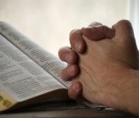 Evangelho do Dia: Pedi e vos será dado