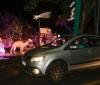 "Espetáculos ""drive-in"" estreiam nesta semana"