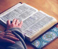 """""""As Escrituras Sagradas são um tesouro inesgotável"""" destaca o Papa Francisco"""